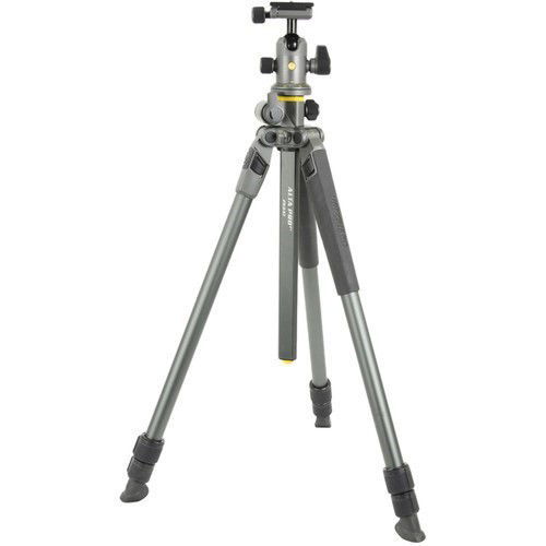 Vanguard Alta Pro 2 263AB100 Aluminum-Alloy Tripod with BH-100 Ball Head Kit price in india features reviews specs